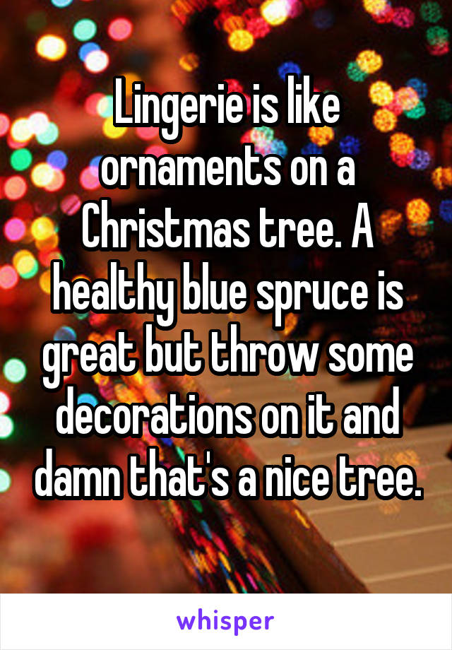 Lingerie is like ornaments on a Christmas tree. A healthy blue spruce is great but throw some decorations on it and damn that's a nice tree.