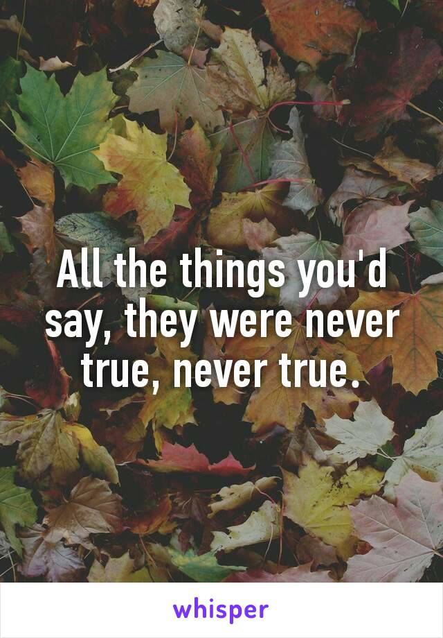 All the things you'd say, they were never true, never true.