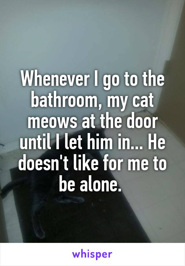 Whenever I go to the bathroom, my cat meows at the door until I let him in... He doesn't like for me to be alone.