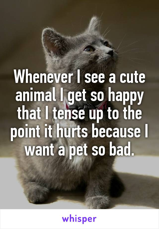 Whenever I see a cute animal I get so happy that I tense up to the point it hurts because I want a pet so bad.