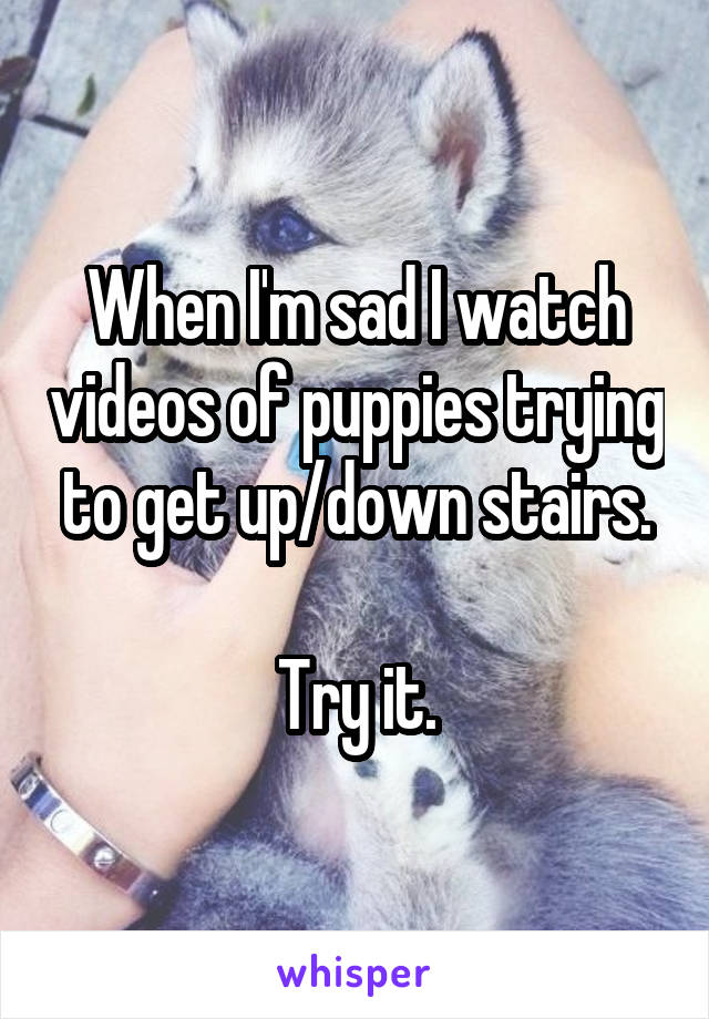 When I'm sad I watch videos of puppies trying to get up/down stairs.  Try it.