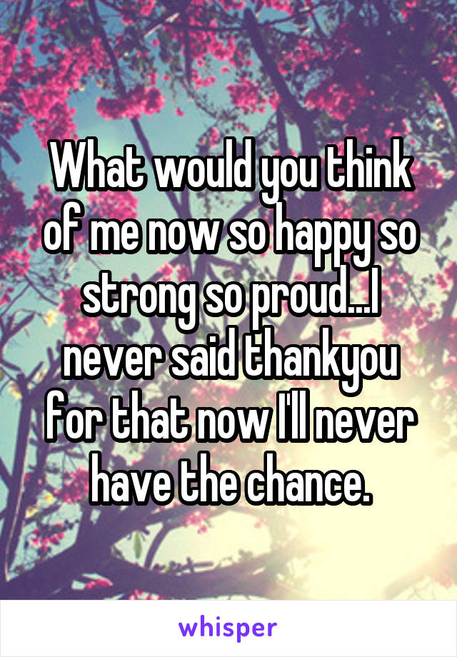 What would you think of me now so happy so strong so proud...I never said thankyou for that now I'll never have the chance.