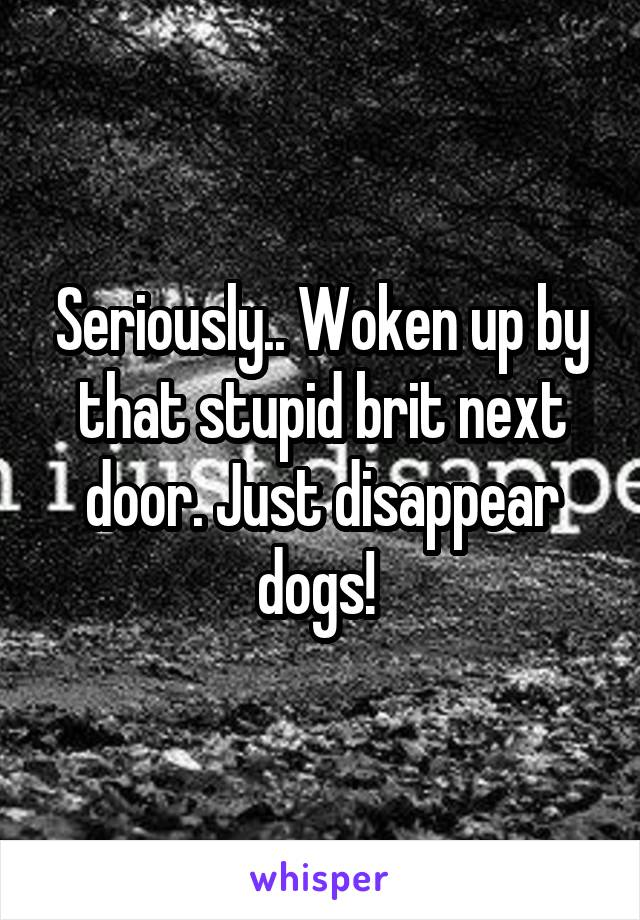 Seriously.. Woken up by that stupid brit next door. Just disappear dogs!