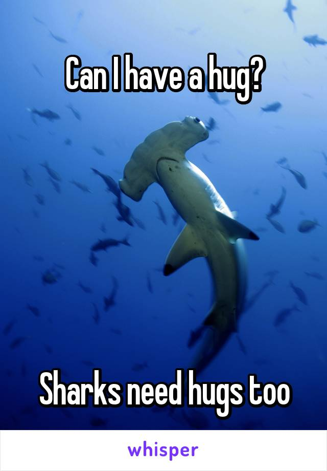 Can I have a hug?       Sharks need hugs too