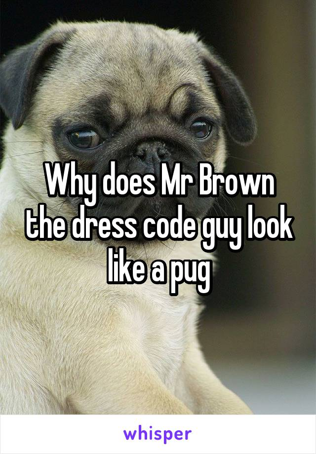 Why does Mr Brown the dress code guy look like a pug
