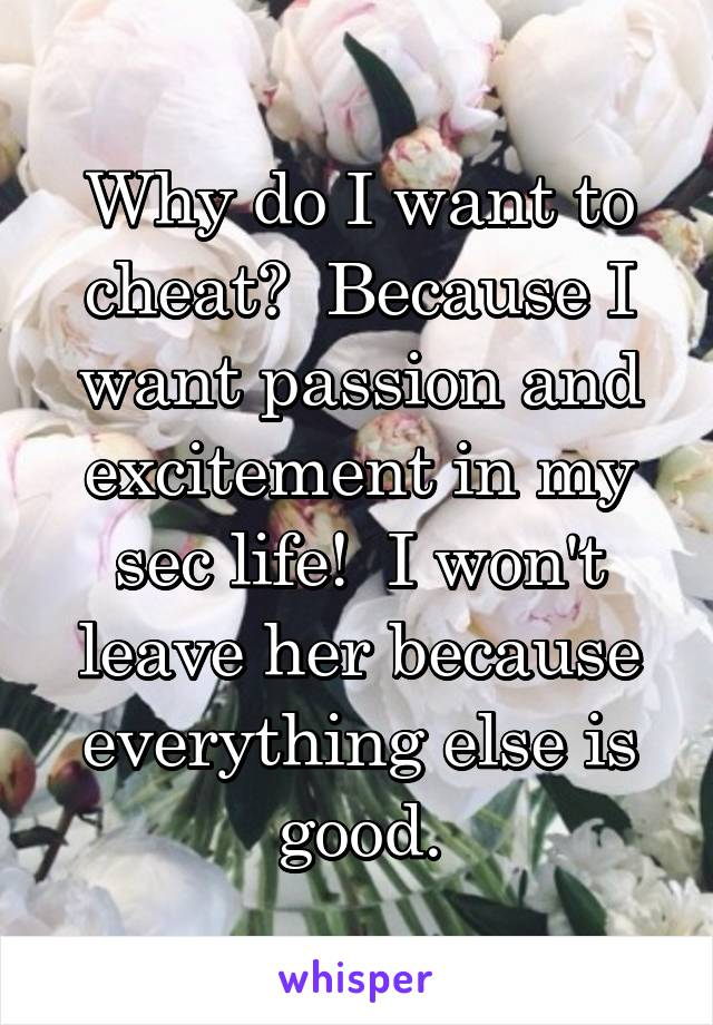 Why do I want to cheat?  Because I want passion and excitement in my sec life!  I won't leave her because everything else is good.