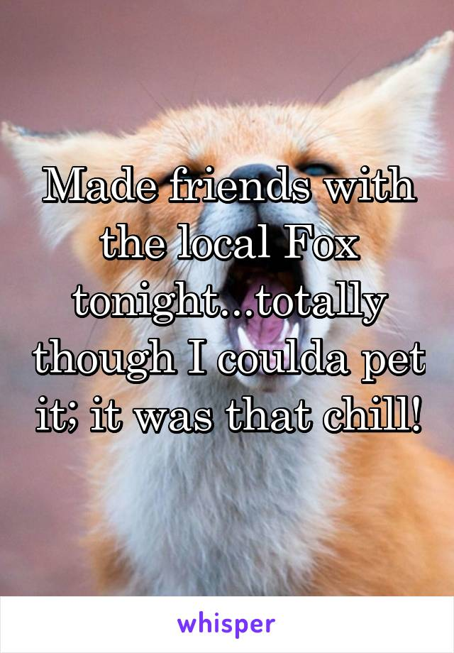 Made friends with the local Fox tonight...totally though I coulda pet it; it was that chill!