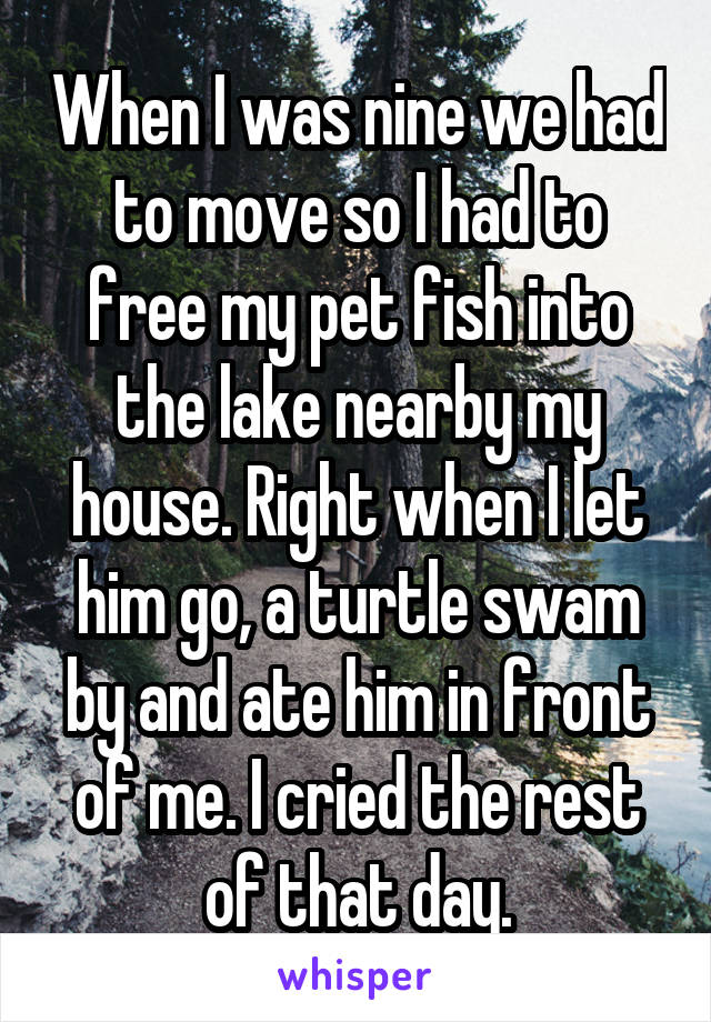 When I was nine we had to move so I had to free my pet fish into the lake nearby my house. Right when I let him go, a turtle swam by and ate him in front of me. I cried the rest of that day.