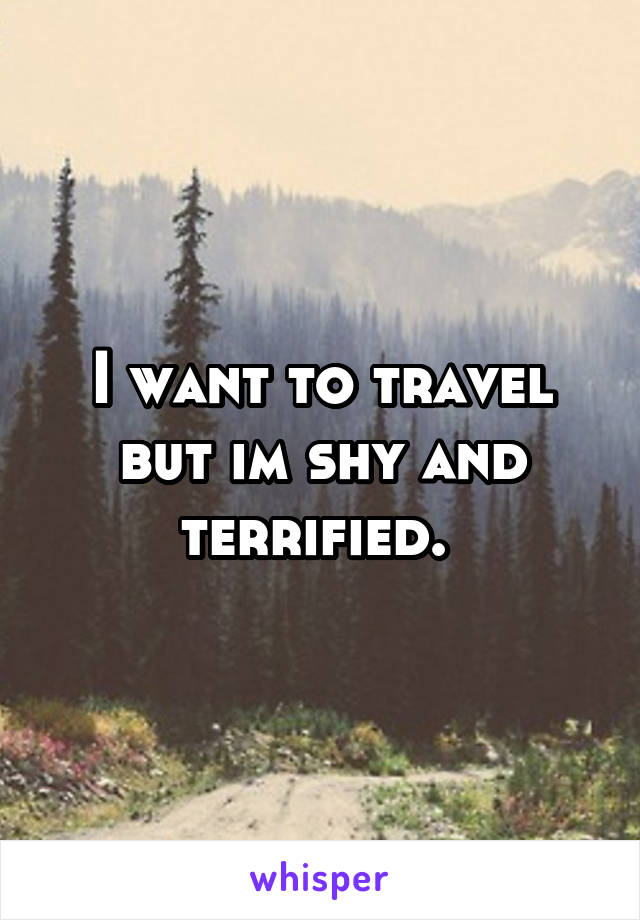 I want to travel but im shy and terrified.