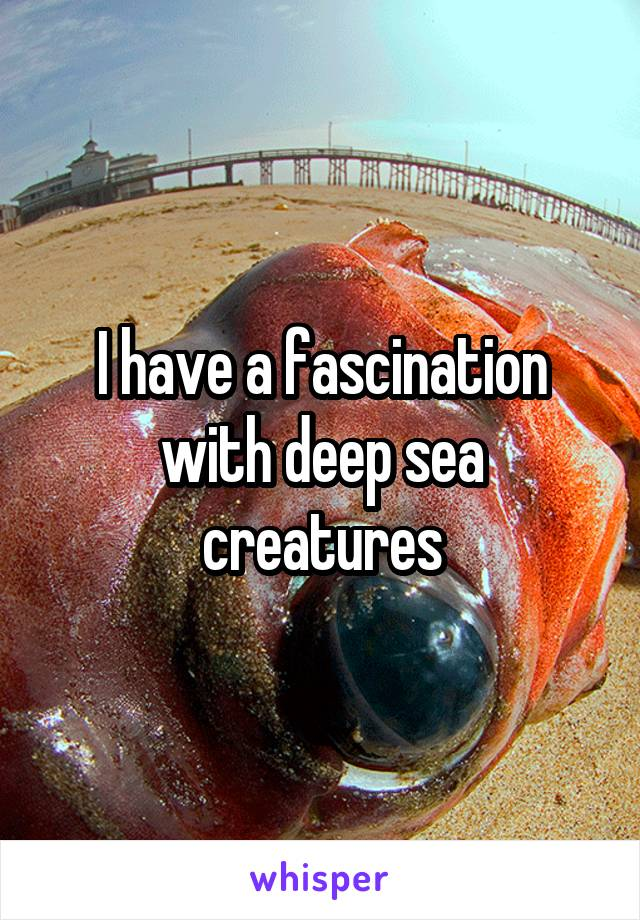 I have a fascination with deep sea creatures