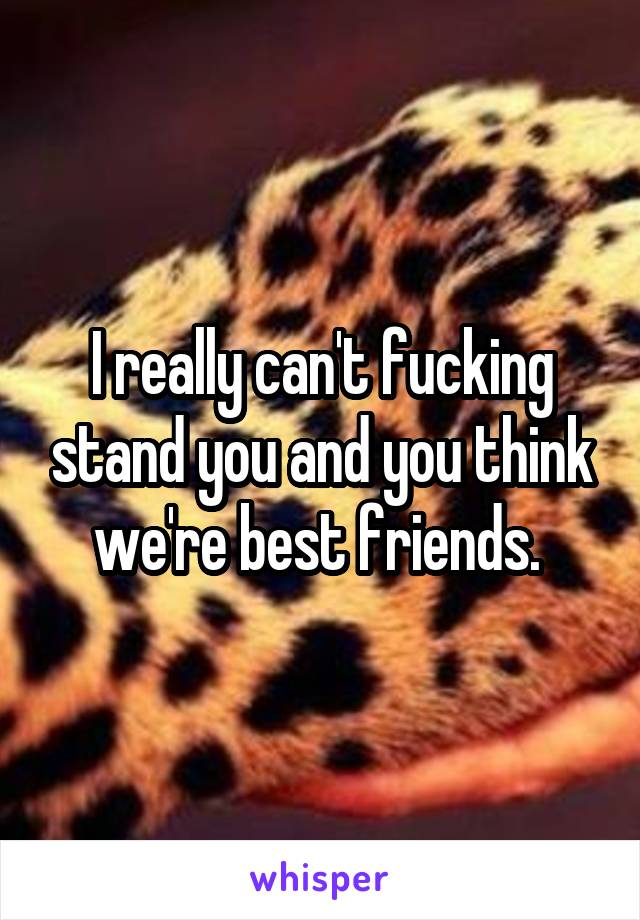 I really can't fucking stand you and you think we're best friends.