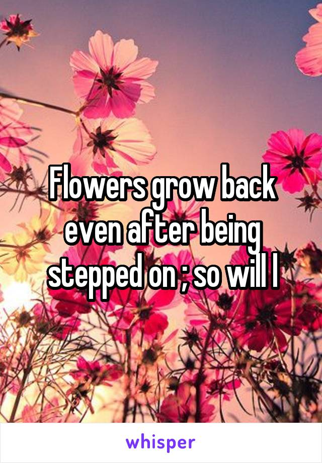 Flowers grow back even after being stepped on ; so will l