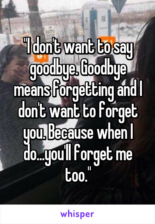 """I don't want to say goodbye. Goodbye means forgetting and I don't want to forget you. Because when I do...you'll forget me too."""