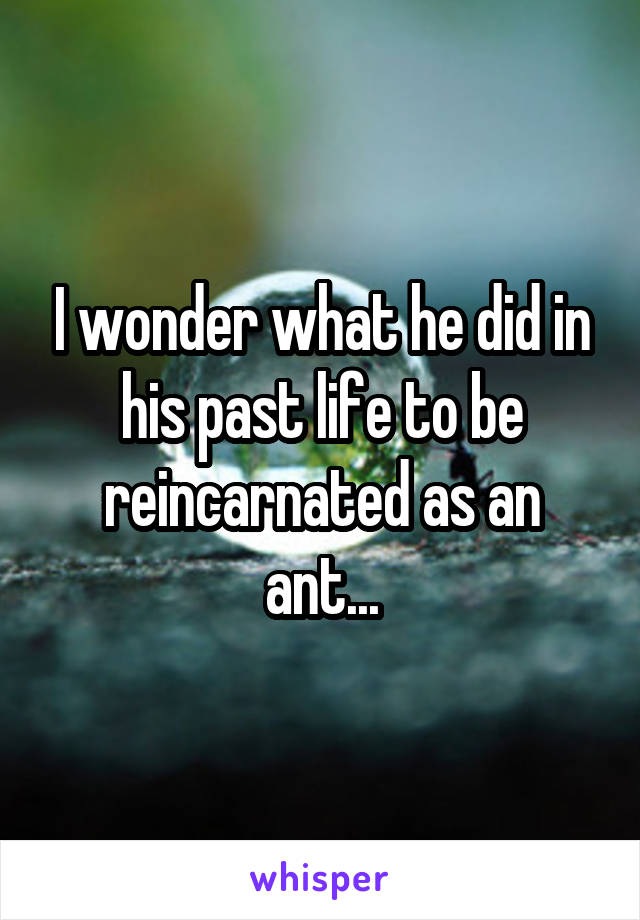 I wonder what he did in his past life to be reincarnated as an ant...