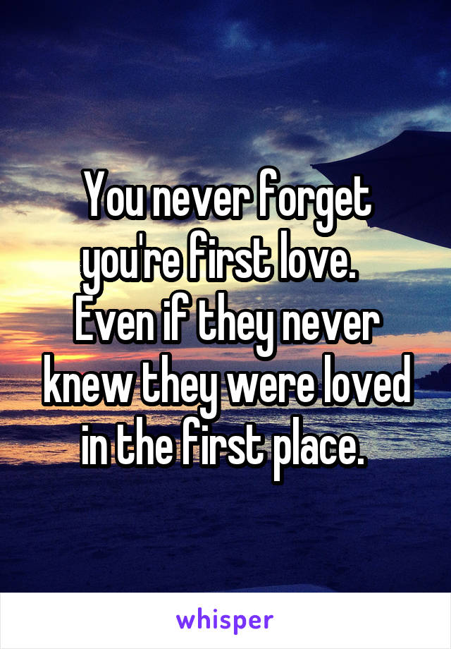 You never forget you're first love.   Even if they never knew they were loved in the first place.