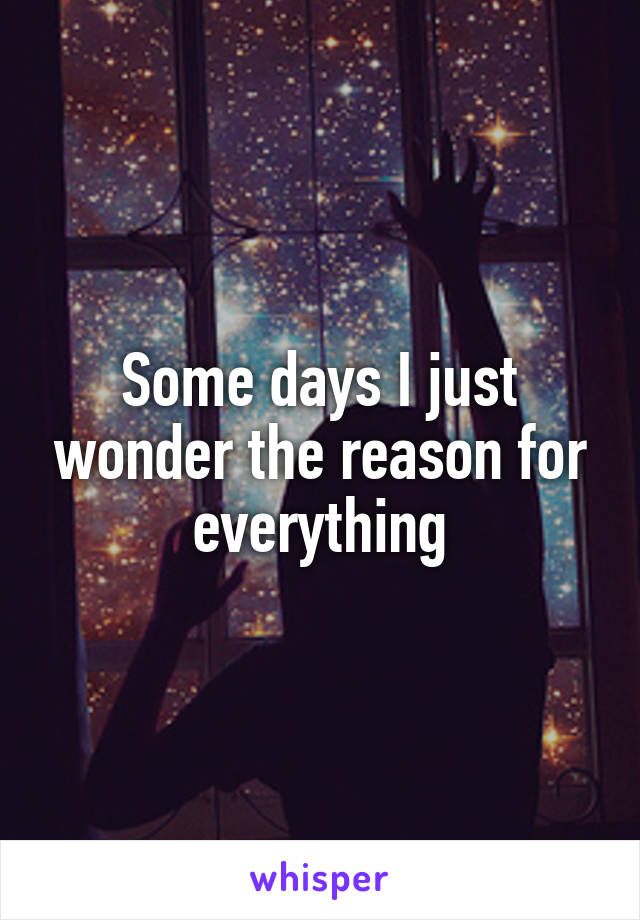 Some days I just wonder the reason for everything