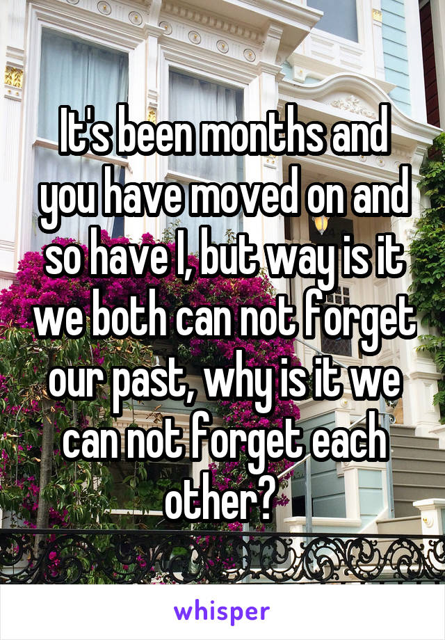 It's been months and you have moved on and so have I, but way is it we both can not forget our past, why is it we can not forget each other?