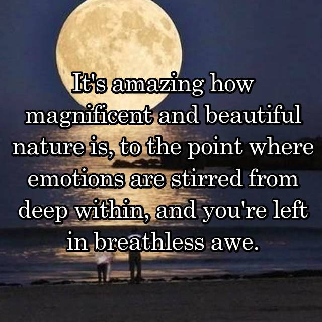 It's amazing how magnificent and beautiful nature is, to the point where emotions are stirred from deep within, and you're left in breathless awe.