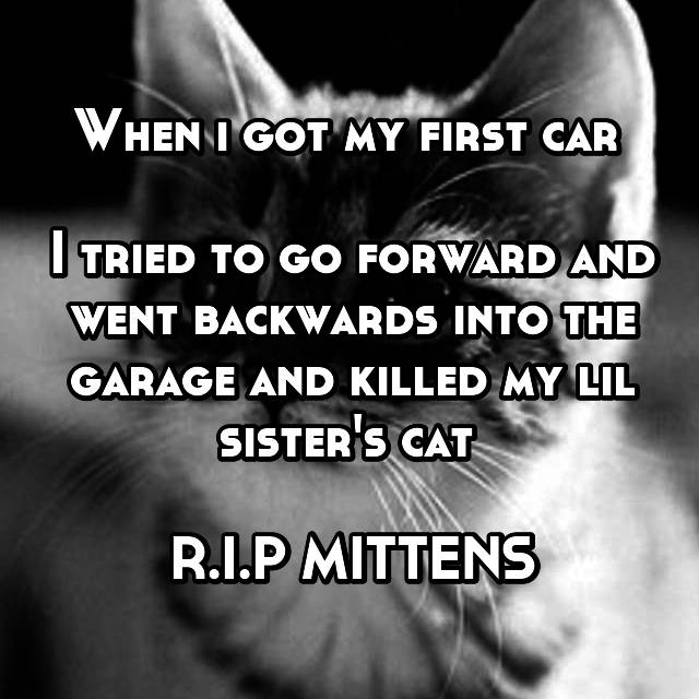 When i got my first car   I tried to go forward and went backwards into the garage and killed my lil sister's cat   R.I.P MITTENS