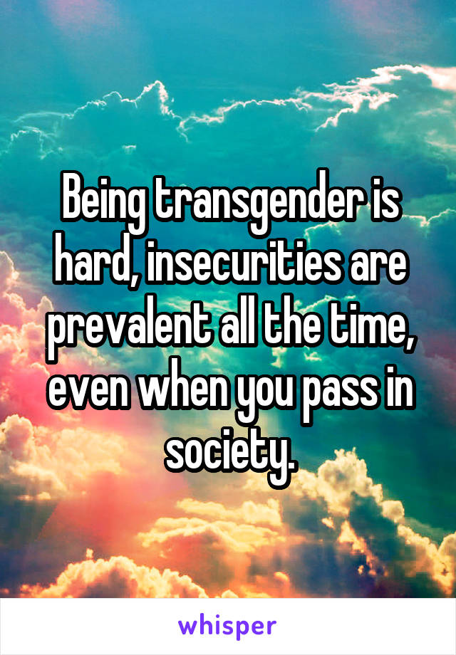 Being transgender is hard, insecurities are prevalent all the time, even when you pass in society.