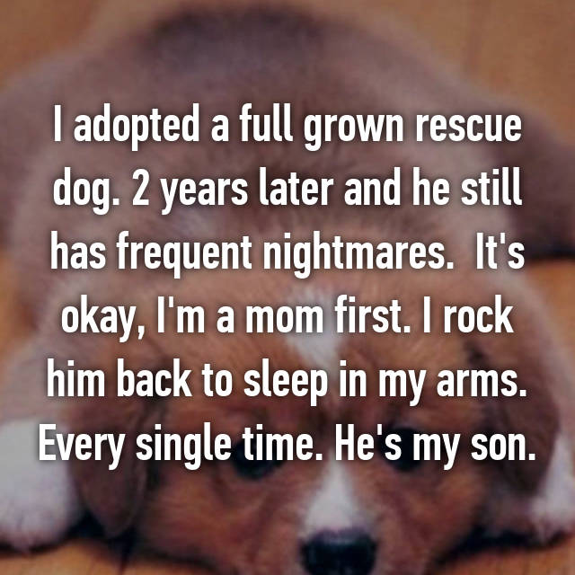 I adopted a full grown rescue dog. 2 years later and he still has frequent nightmares.  It's okay, I'm a mom first. I rock him back to sleep in my arms. Every single time. He's my son.
