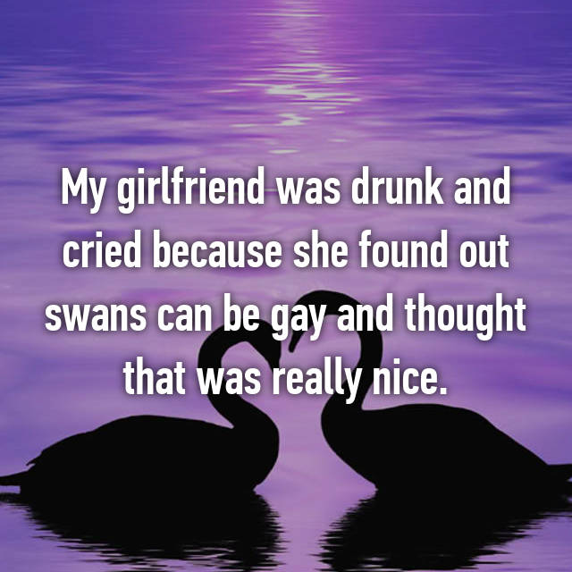 My girlfriend was drunk and cried because she found out swans can be gay and thought that was really nice.