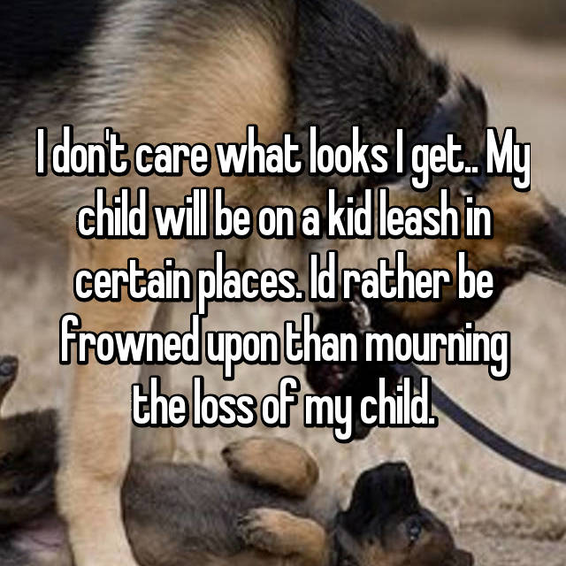 I don't care what looks I get.. My child will be on a kid leash in certain places. Id rather be frowned upon than mourning the loss of my child.