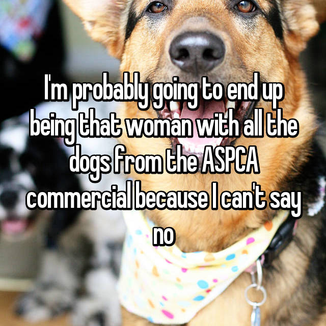 I'm probably going to end up being that woman with all the dogs from the ASPCA commercial because I can't say no