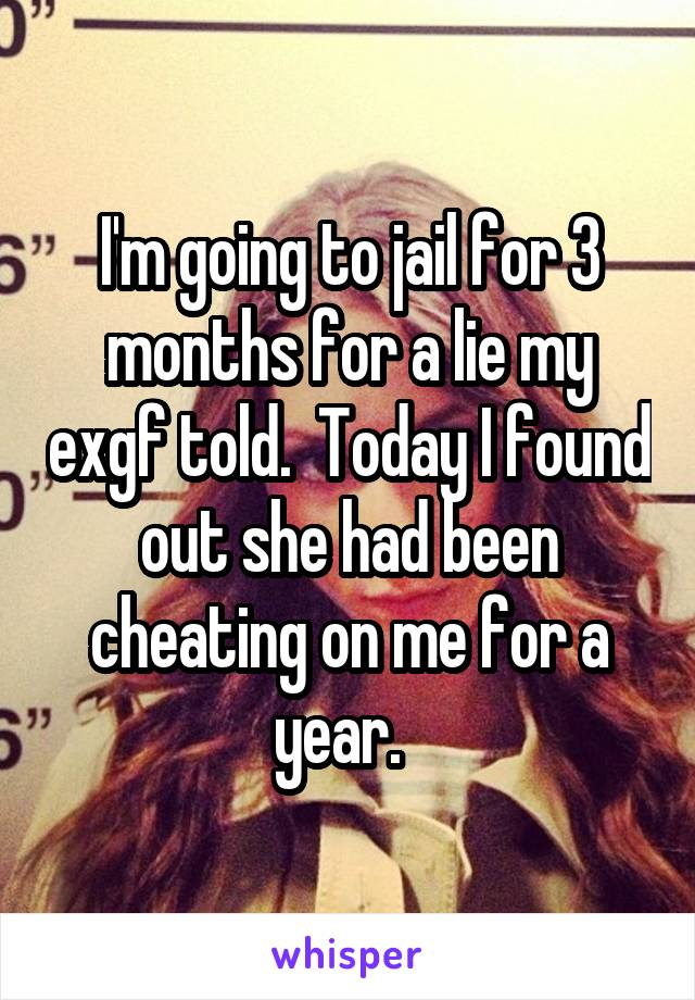 I'm going to jail for 3 months for a lie my exgf told.  Today I found out she had been cheating on me for a year.