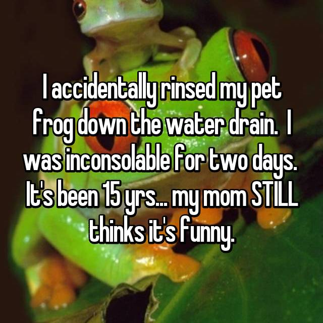 I accidentally rinsed my pet frog down the water drain.  I was inconsolable for two days.  It's been 15 yrs... my mom STILL thinks it's funny.