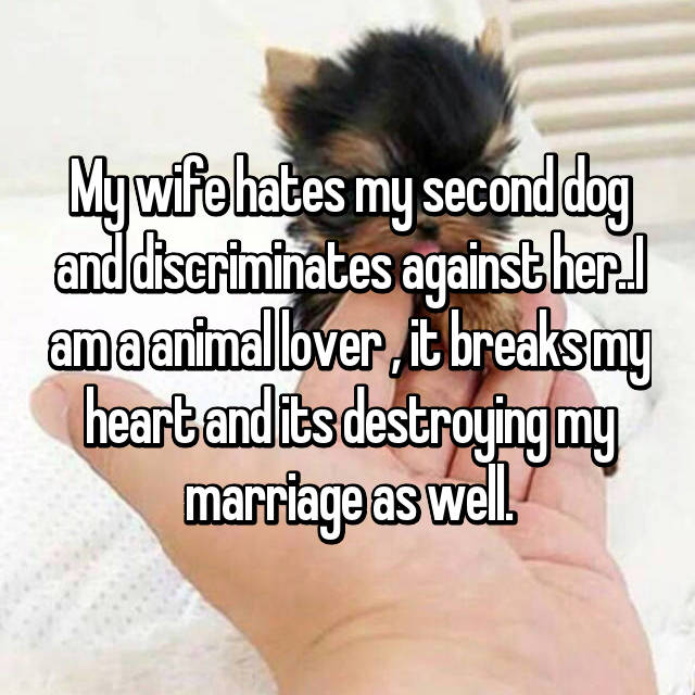 My wife hates my second dog and discriminates against her..I am a animal lover , it breaks my heart and its destroying my marriage as well.
