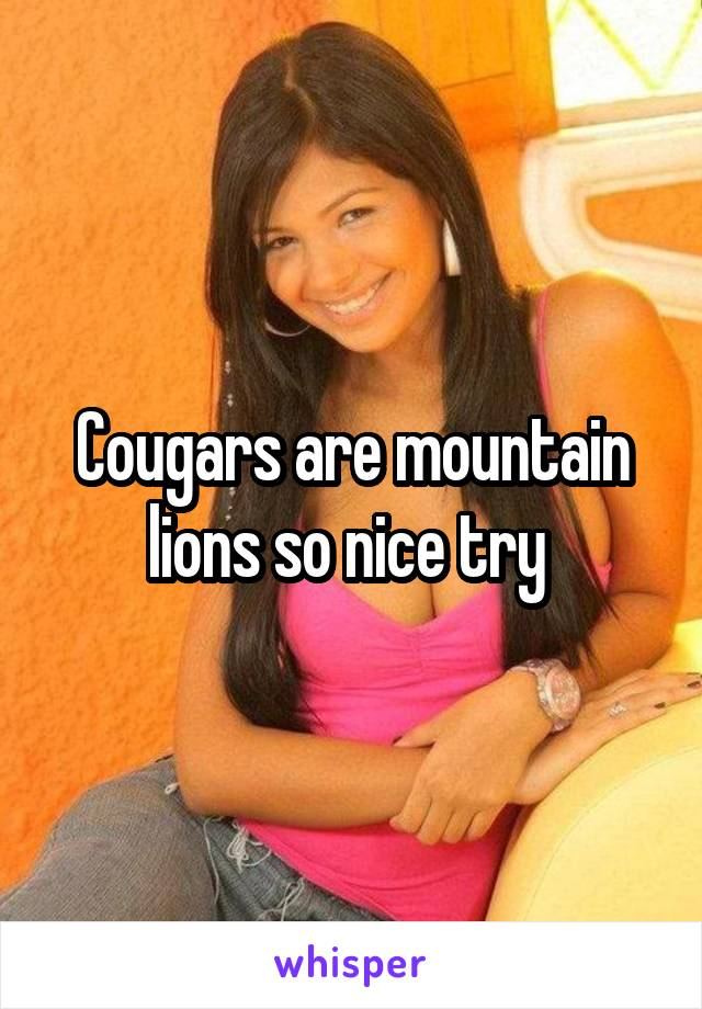 cougars nice