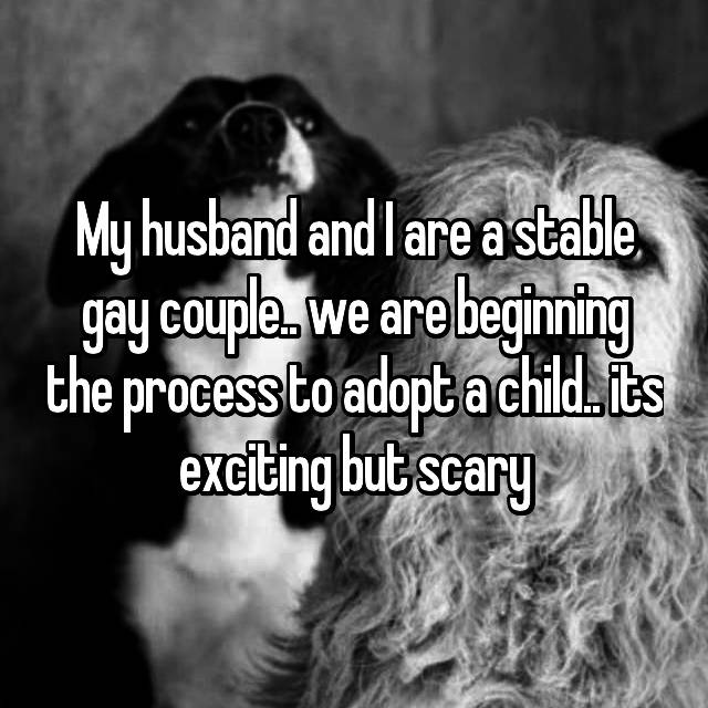 My husband and I are a stable gay couple.. we are beginning the process to adopt a child.. its exciting but scary
