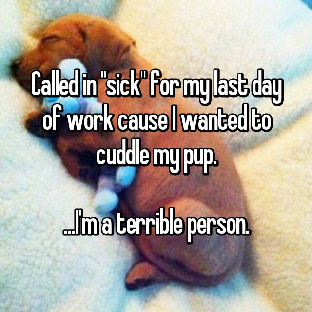 "Called in ""sick"" for my last day of work cause I wanted to cuddle my pup.  ...I'm a terrible person."