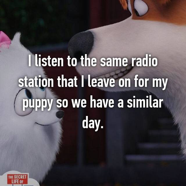 I listen to the same radio station that I leave on for my puppy so we have a similar day.
