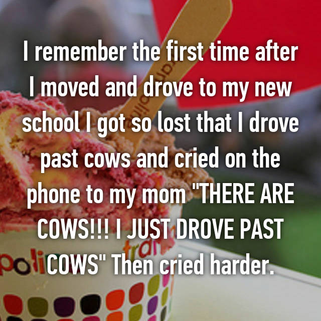 """I remember the first time after I moved and drove to my new school I got so lost that I drove past cows and cried on the phone to my mom """"THERE ARE COWS!!! I JUST DROVE PAST COWS"""" Then cried harder."""