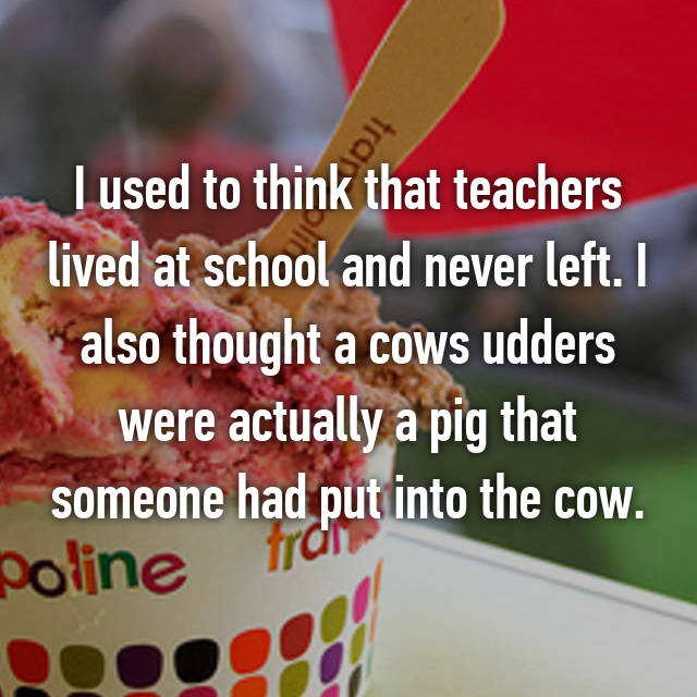 I used to think that teachers lived at school and never left. I also thought a cows udders were actually a pig that someone had put into the cow.