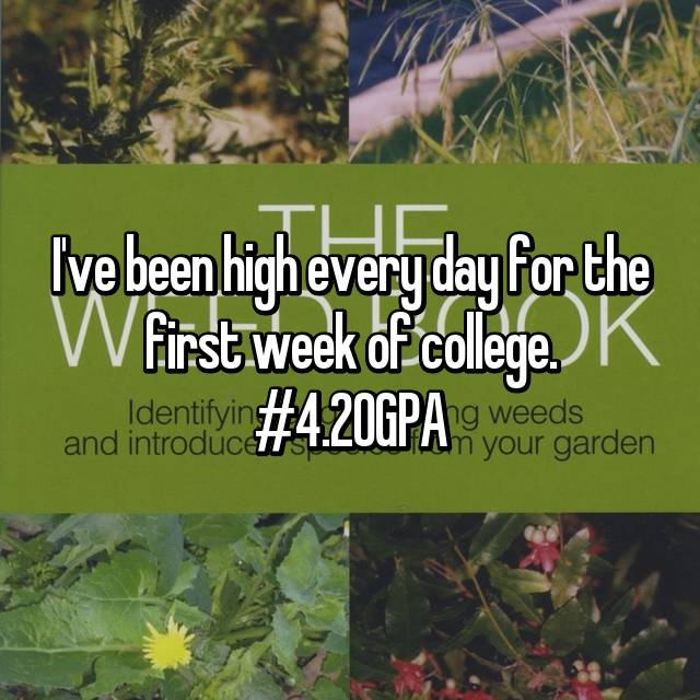 I've been high every day for the first week of college. #4.20GPA