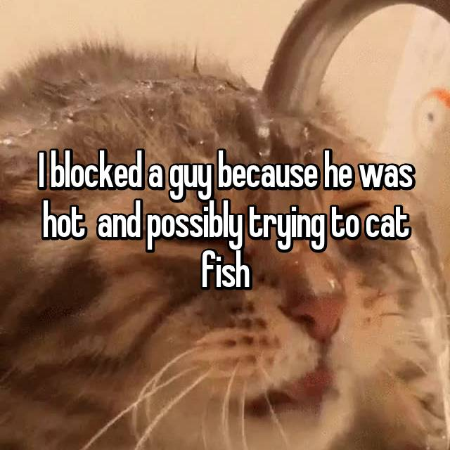 I blocked a guy because he was hot 😂 and possibly trying to cat fish