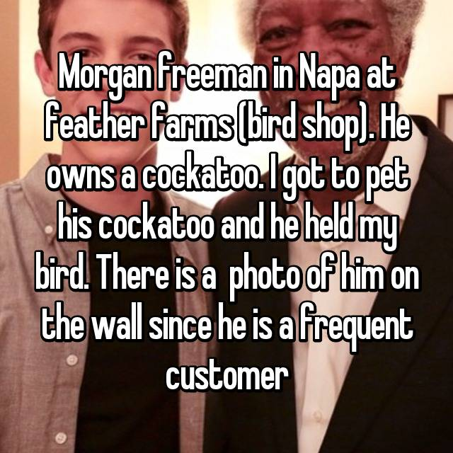Morgan freeman in Napa at feather farms (bird shop). He owns a cockatoo. I got to pet his cockatoo and he held my bird. There is a  photo of him on the wall since he is a frequent customer