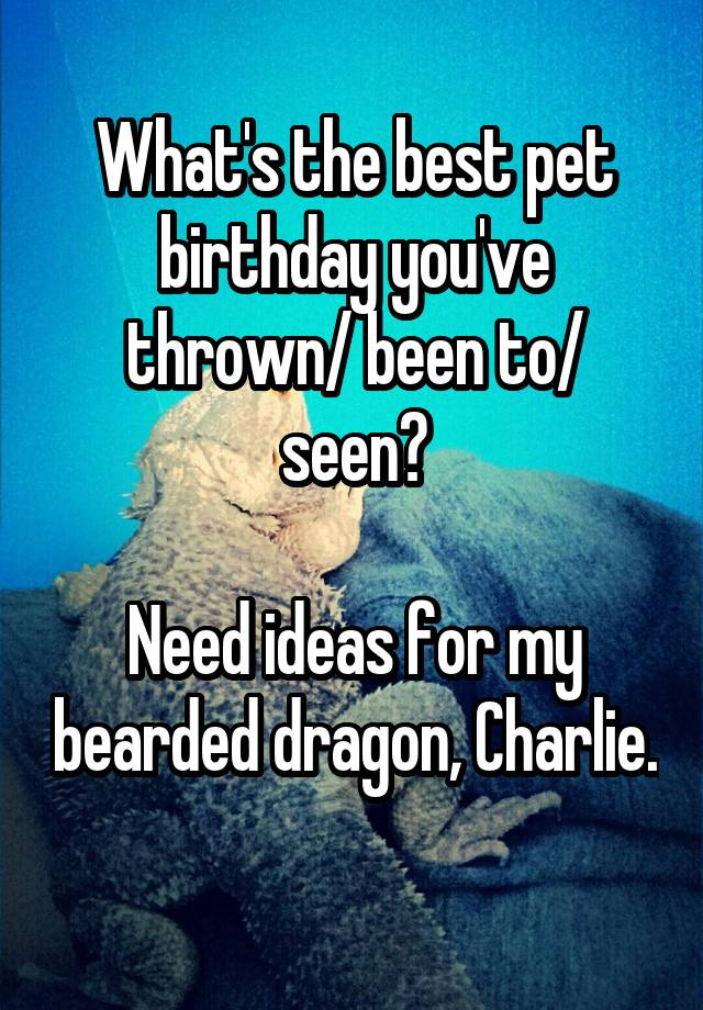 What's the best pet birthday you've thrown/ been to/ seen?  Need ideas for my bearded dragon, Charlie.