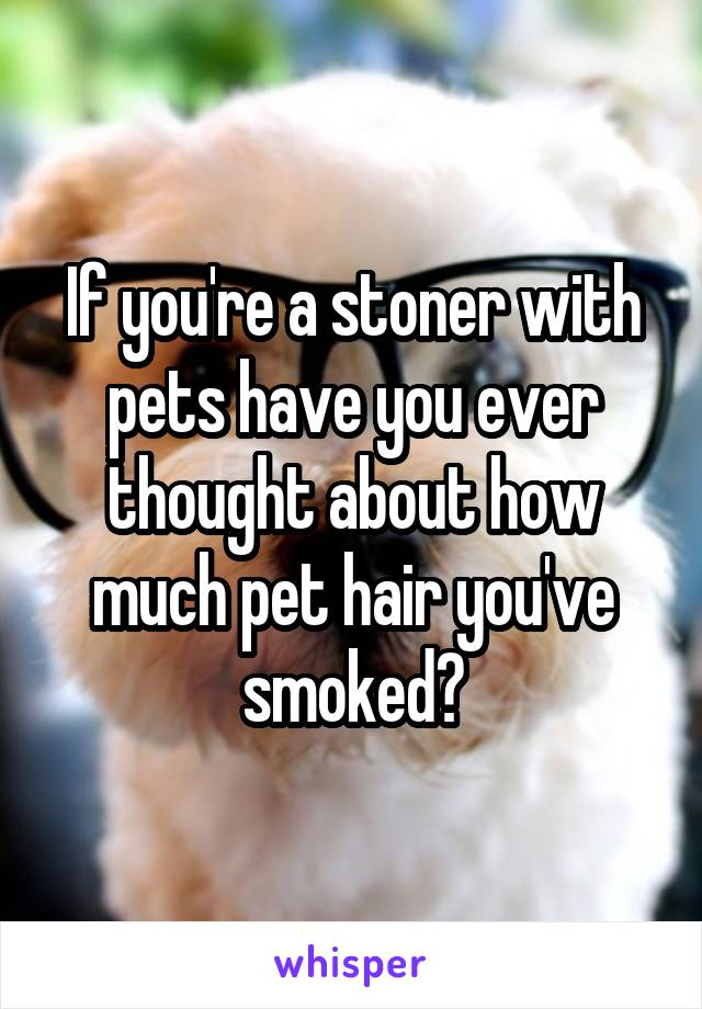 If you're a stoner with pets have you ever thought about how much pet hair you've smoked?