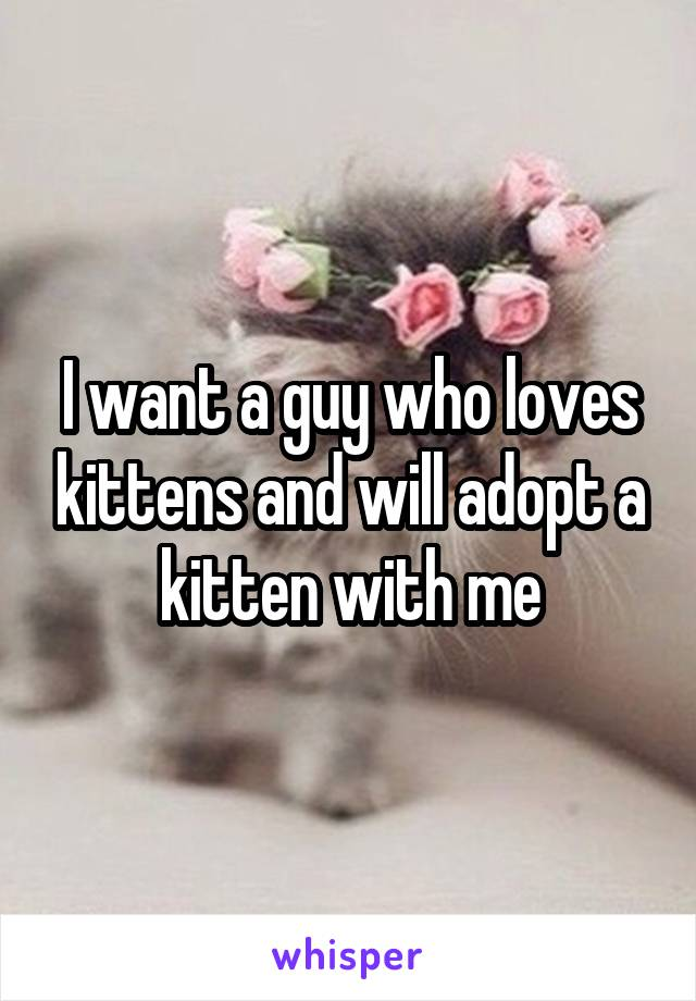 I want a guy who loves kittens and will adopt a kitten with me