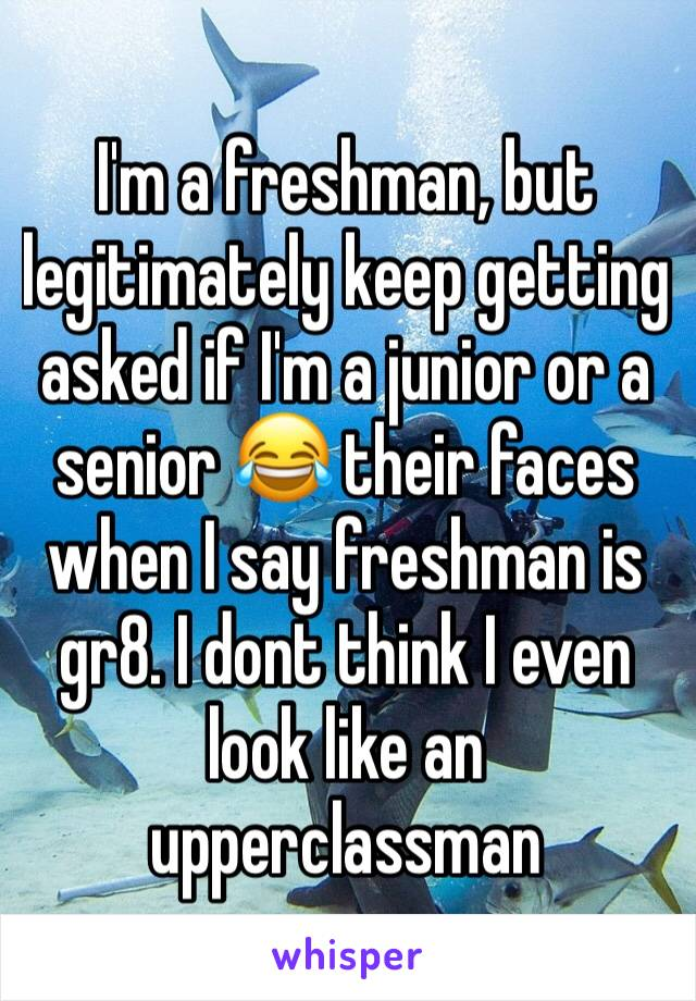 I'm a freshman, but legitimately keep getting asked if I'm a junior or a senior 😂 their faces when I say freshman is gr8. I dont think I even look like an upperclassman