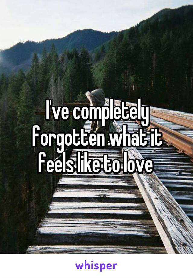 I've completely forgotten what it feels like to love