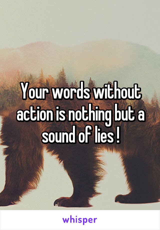 Your words without action is nothing but a sound of lies !