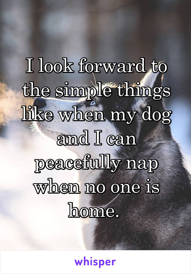 I look forward to the simple things like when my dog and I can peacefully nap when no one is home.