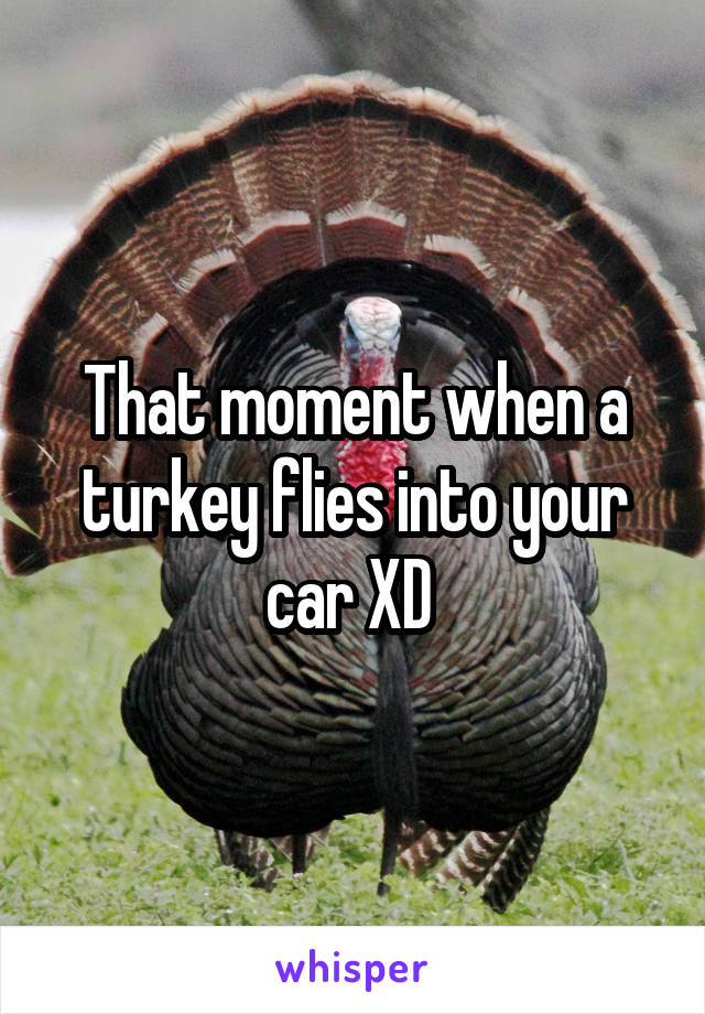 That moment when a turkey flies into your car XD
