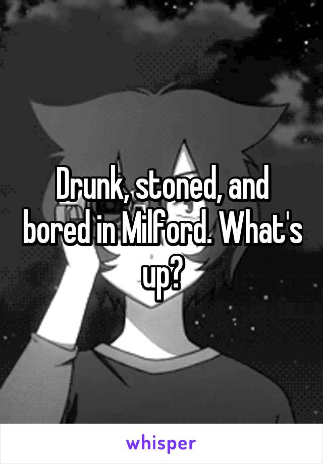Drunk, stoned, and bored in Milford. What's up?