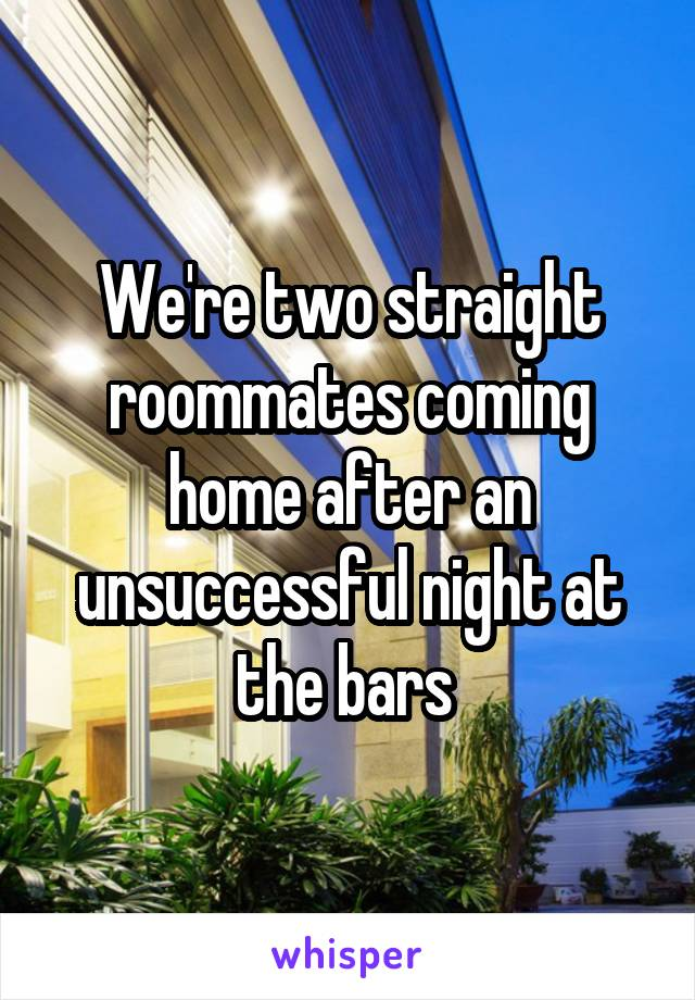We're two straight roommates coming home after an unsuccessful night at the bars